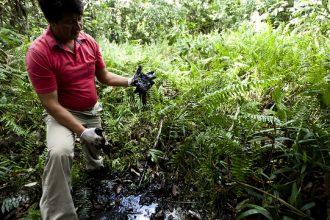 Oil contamination in the Ecuadorean Amazon rainforest.