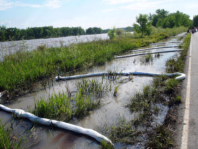 Cleanup of Exxon Mobil's July 2 oil pipeline spill along Thiel Rd in Laurel