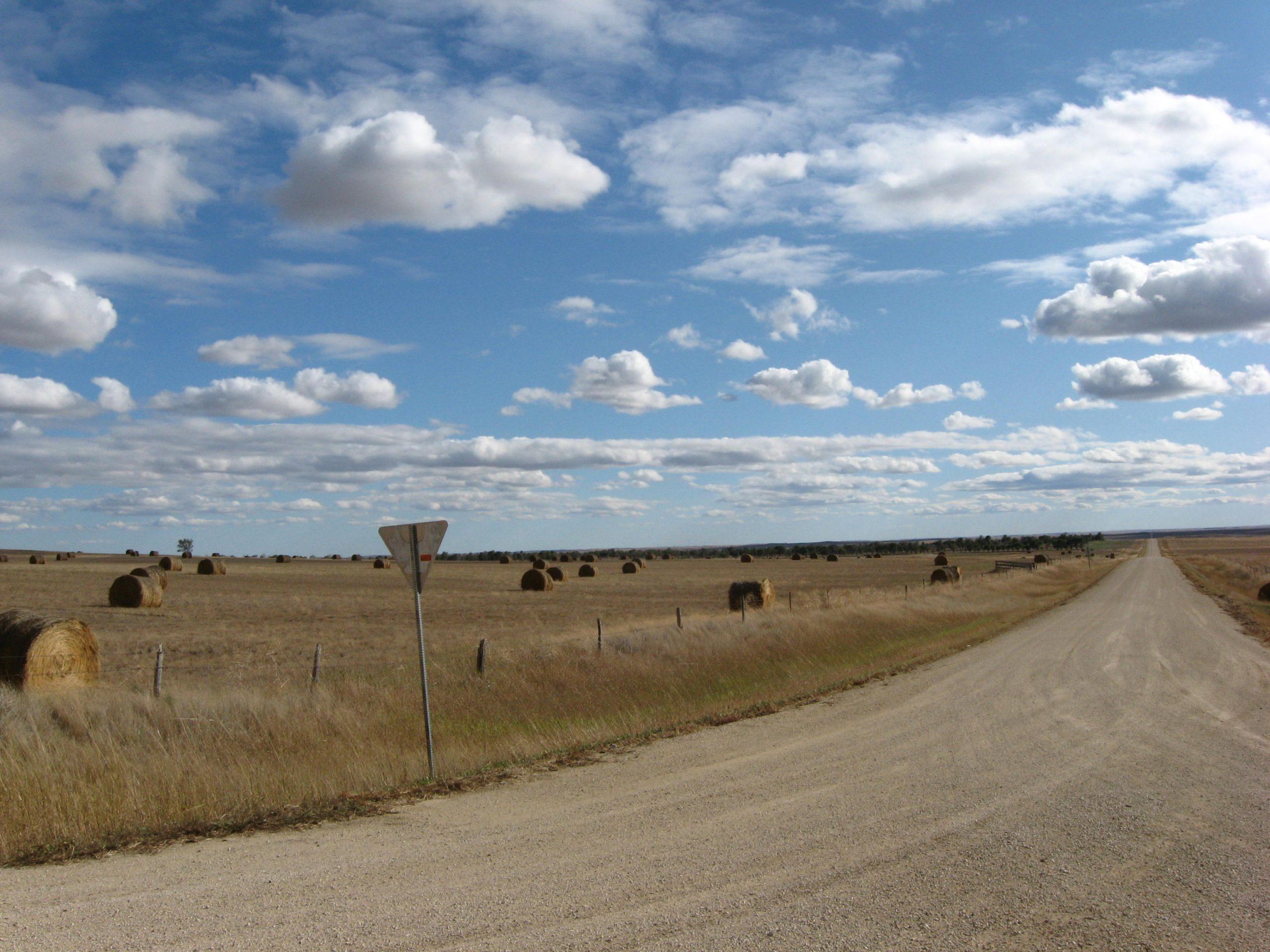 A field in Zona Vig's ranch in South Dakota.