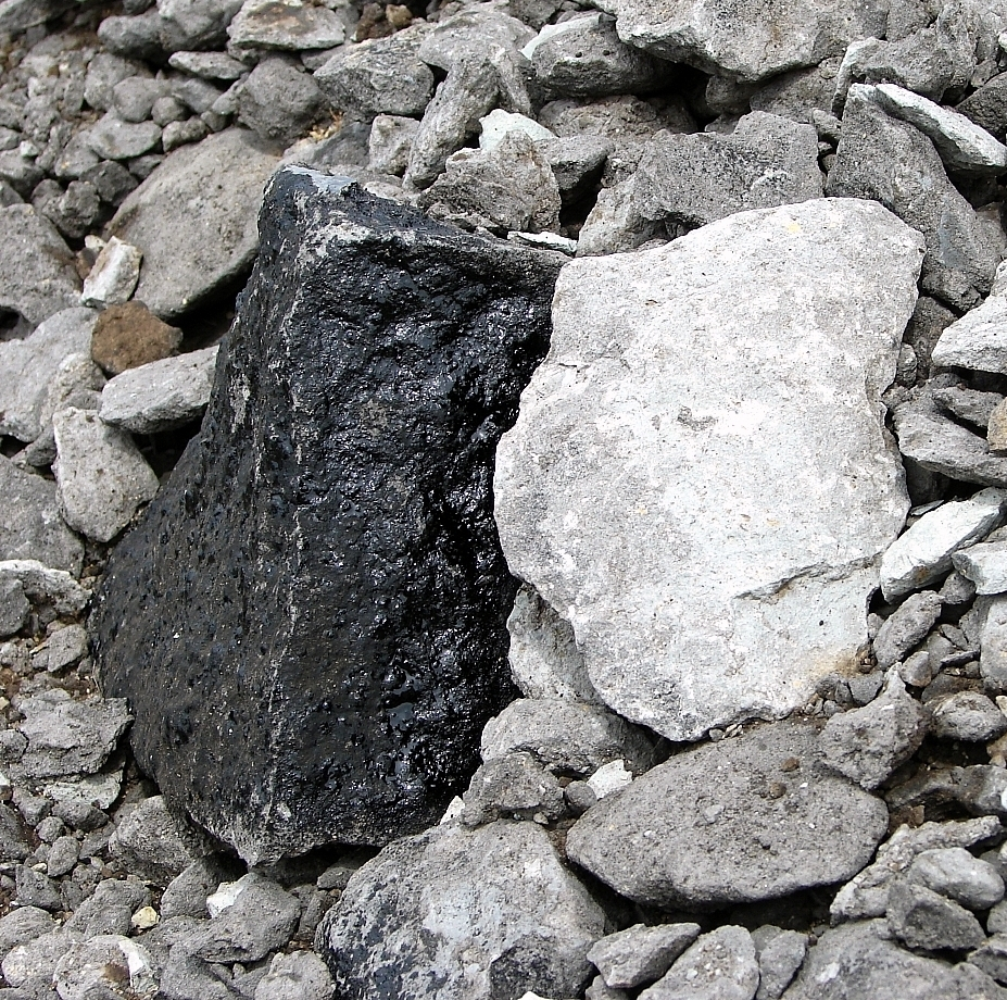 Sticky bitumen oozes from a rock in a tar sands test pit on the nearly 6,000 acr