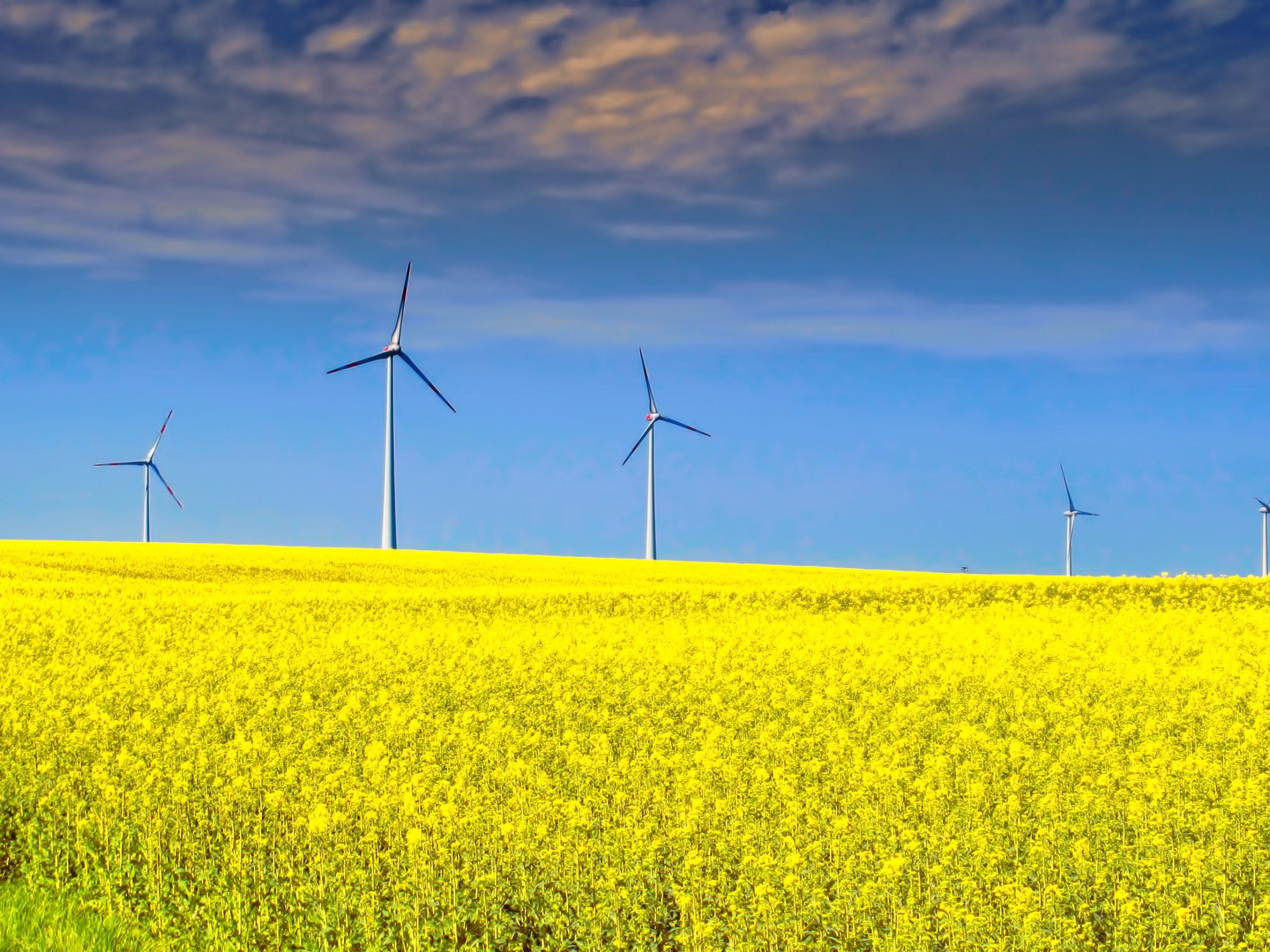 Wind farm in Germany.