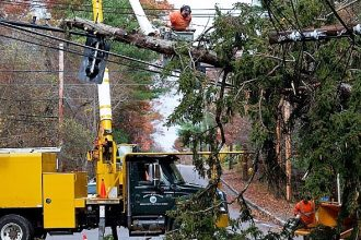 Public works crews remove a large tree from power lines after Hurricane Sandy pa