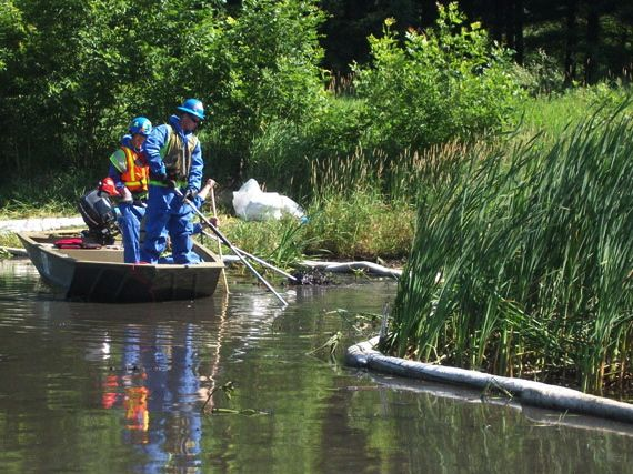 Cleanup workers removing submerged oil.