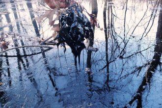 Exxon Oil Spill Arkansas