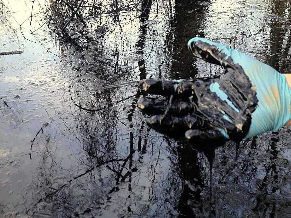 Oil from Exxon's ruptured Pegasus pipeline