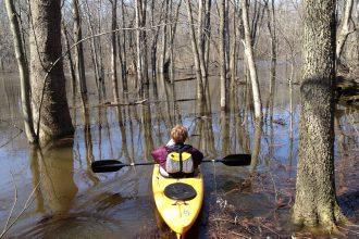 Kayaks on the Kalamazoo River