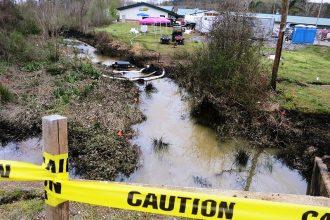 Stream near the site of ExxonMobil's Arkansas spill in the town of Mayflower.