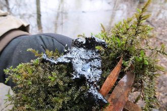Tar ball on the edge of a cove in Mayflower, Ark. in the wake of Exxon's Pegasus