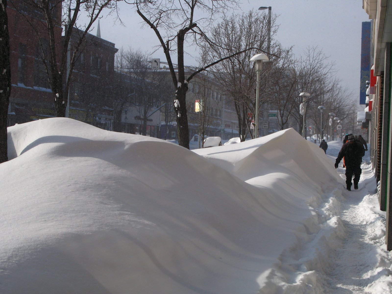 Boston's record-breaking winter stemmed in part from a warming Arctic
