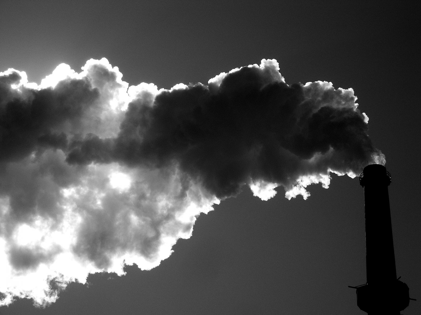 States may choose to join a carbon trading program to comply with Clean Power Plan rules