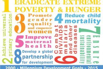 The UN considered its Millenium Development Goals a success