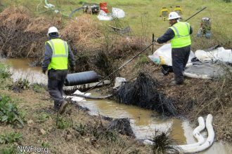 Exxon was faulted for negligence in the 2013 Pegasus pipeline spill