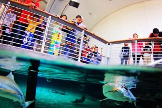 The California Academy of Sciences says it has divested from fossil fuels