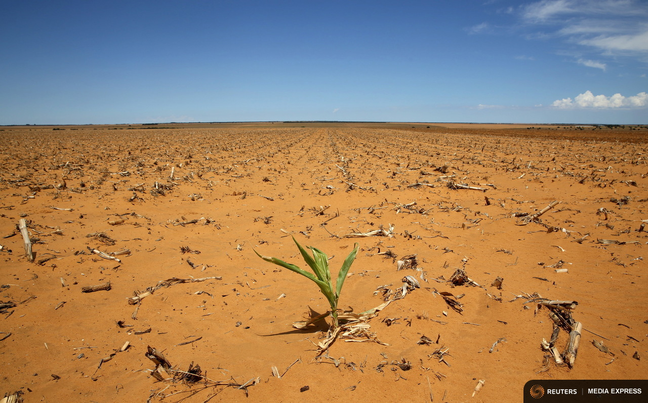 Poorer countries like those in Africa will suffer more food shortages because of climate change