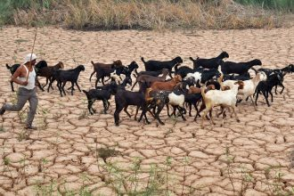 Heat waves and drought have plagued India and much of the world in 2015 and 2016