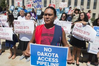 Native Americans, environmental activists and celebrities protested the Dakota Access pipeline in Washington DC