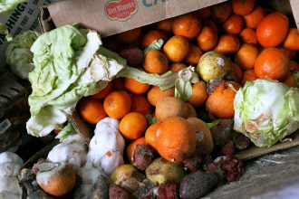 Food waste in New York