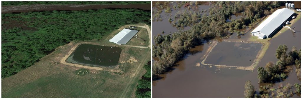 North Carolina farms were inundated in Hurricane Matthew Flooding
