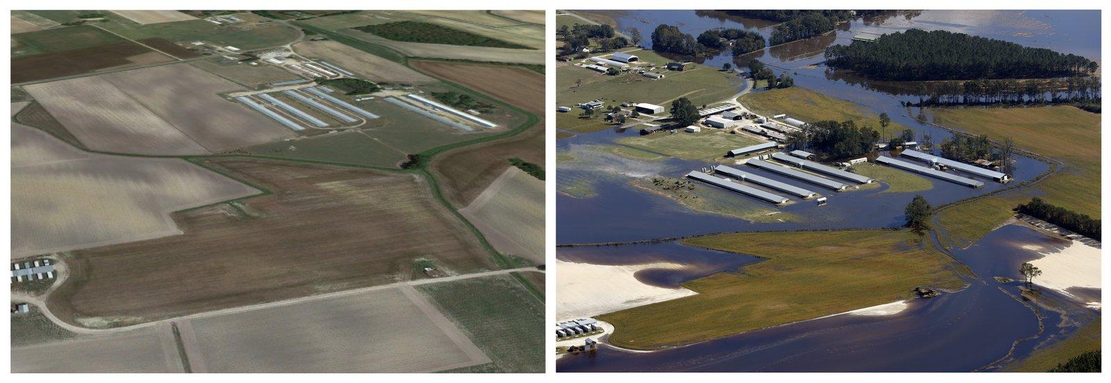 Hurricane Matthew flooding inundated factory farms in North Carolina