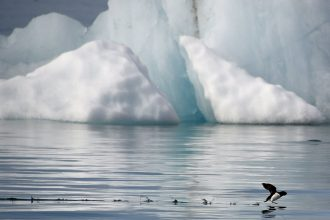 Melting sea ice is a troubling sign of record warmth in the Arctic