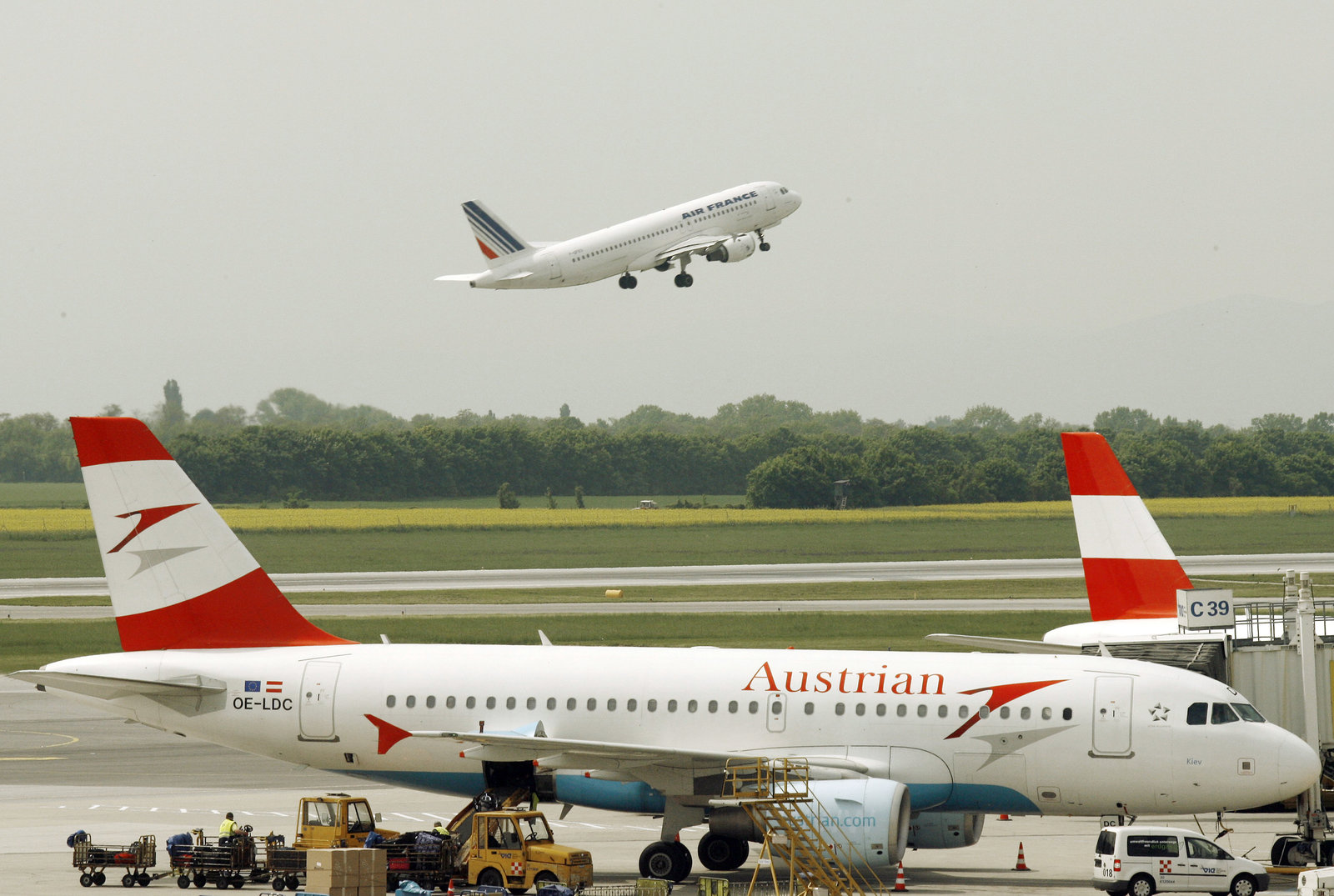 The Vienna airport expansion was blocked by an Austrian court