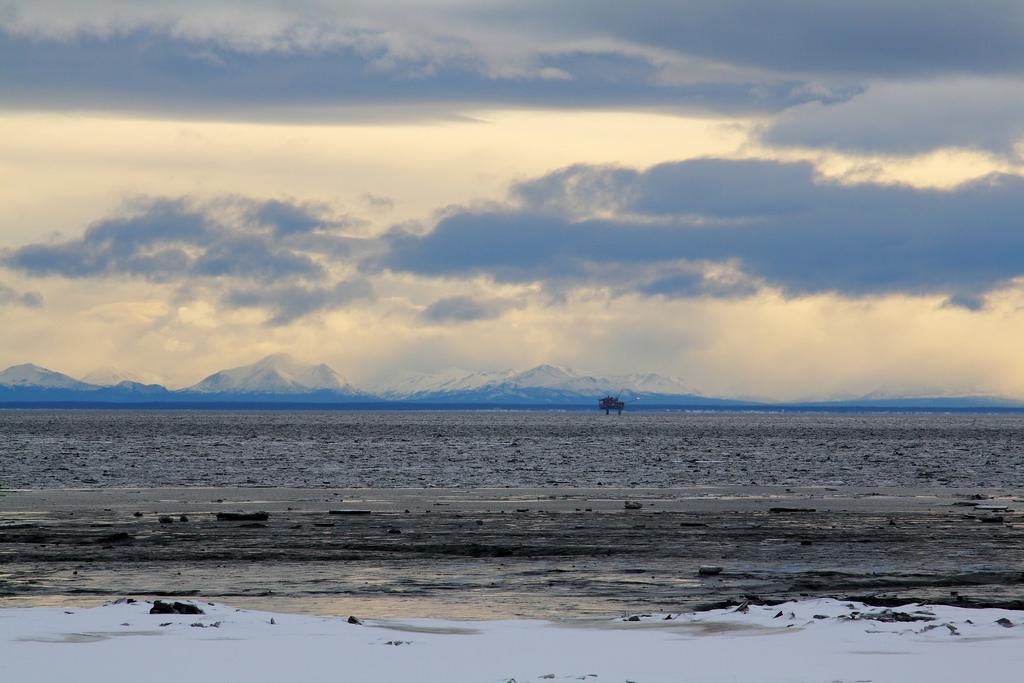 Cook Inlet natural gas leak belugas