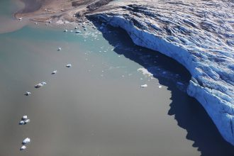 Arctic ice has dwindled to record lows