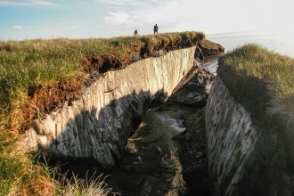Coastal erosion reveals the extent of ice-rich permafrost underlying an active upper layer in Alaska.
