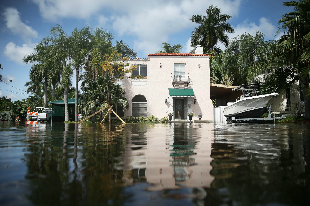 Flooding in Florida. Credit: Joe Raedle/Getty Images
