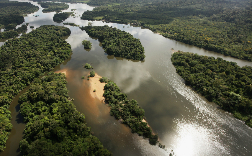 Tropical forests of the Amazon Basin. Credit: Mario Tama/Getty Images