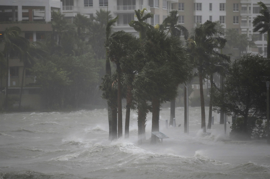 Irma flooding in Miami. Credit: Joe Raedle/Getty Images