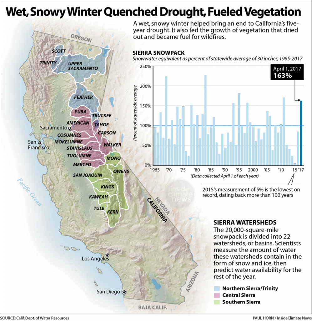 California's Wet, Snowy Winter Fueled Explosive Growth of Grasses and Brush