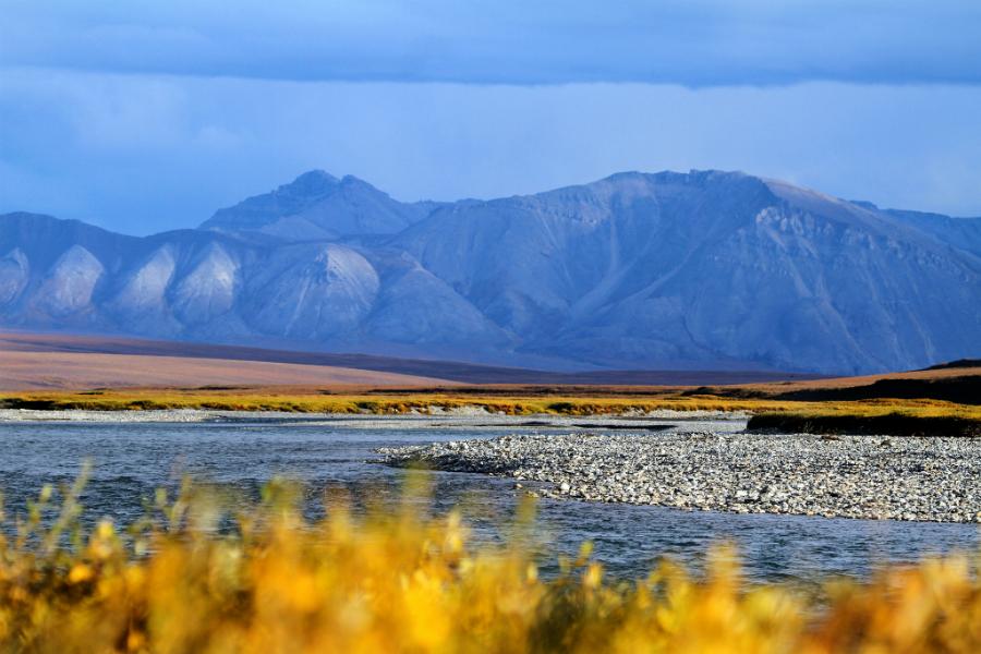 Arctic National Wildlife Refuge. Credit: Katrina Liebich/U.S. Fish and Wildlife Service