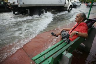 Seasonal high tides now regularly flood the streets of Miami as sea level rises. Credit: Joe Raedle/Getty Images