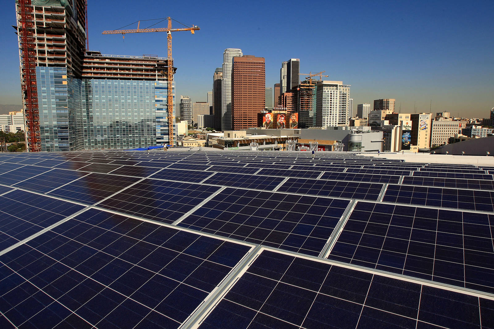 Renewable energy is already the cheaper option in many places. Credit: David McNew/Getty Images