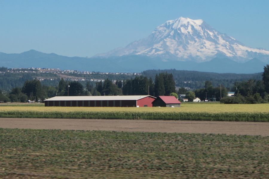 Volcanic plains tend to be fertile farmland. Credit: SounderBruce/CC-BY-SA-2.0