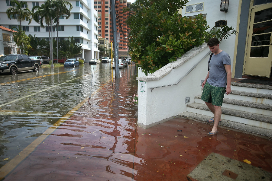Seasonal high tides are showing parts of Miami what sea level rise can do. Credit: Joe Raedle/Getty Images