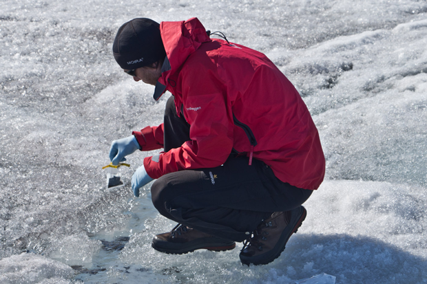 A scientist takes a sample of dark biological material from the Greenland Ice Sheet for testing. Credit: Dark Snow Project