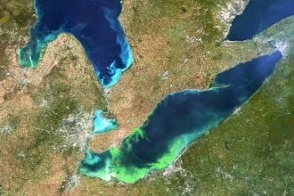 A satellite image captures algae blooms in Lake Erie in 2011. Toledo, Ohio, is at the southwestern tip of the lake. Credit: European Space Agency