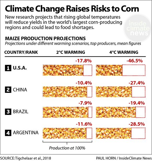 Chart: Global warming increases risks to corn yields