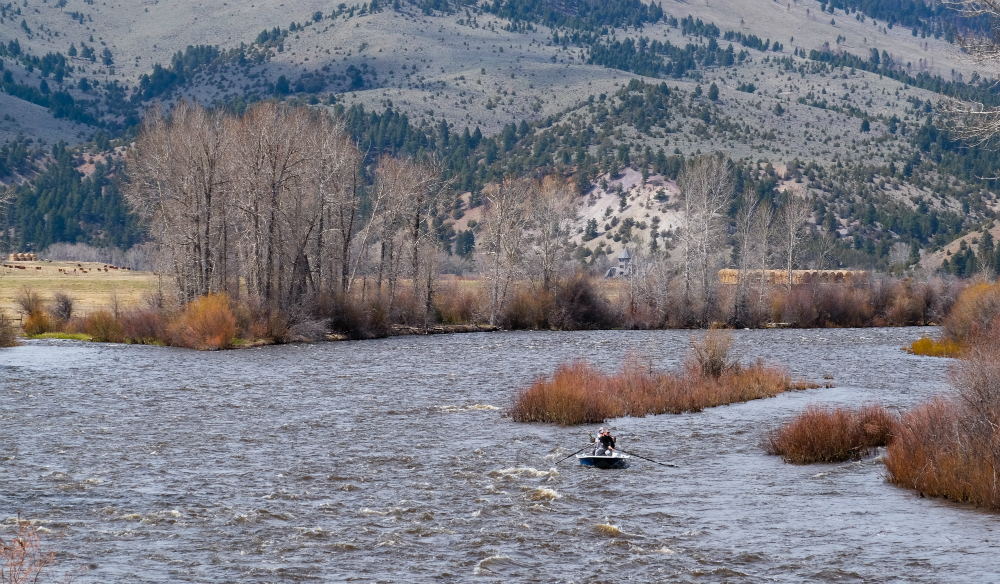 Fishing on the Big Hole River during Montana's spring melt. Credit: Meera Subrmanian