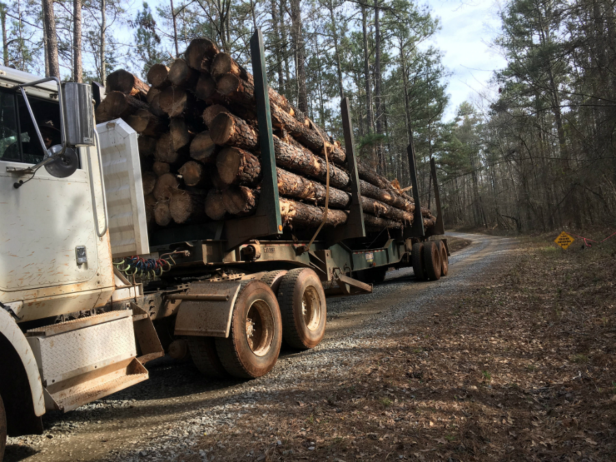 A logging truck in Georgia. Credit: Chattahoochee-Oconee National Forest/CC-BY-2.0