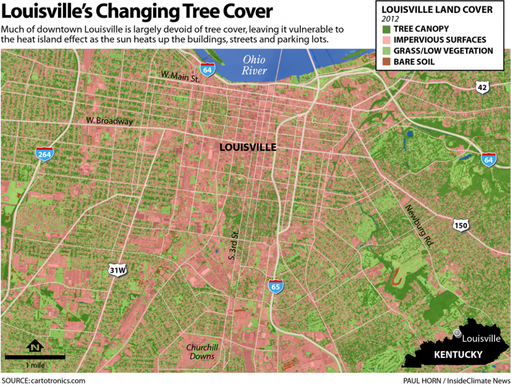 Map: Louisville's Changing Tree Cover