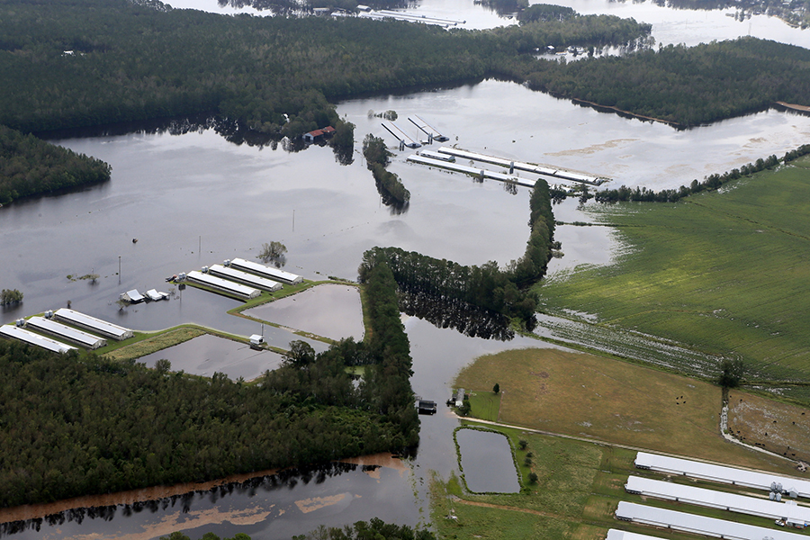A photo shot shortly after Florence passed through North Carolina shows a flooded livestock farm. Credit: Rick Dove/Waterkeeper Alliance