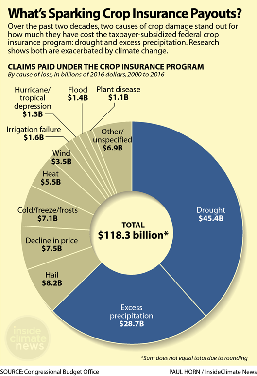 Graph: What's Sparking Crop Insurance Payouts?