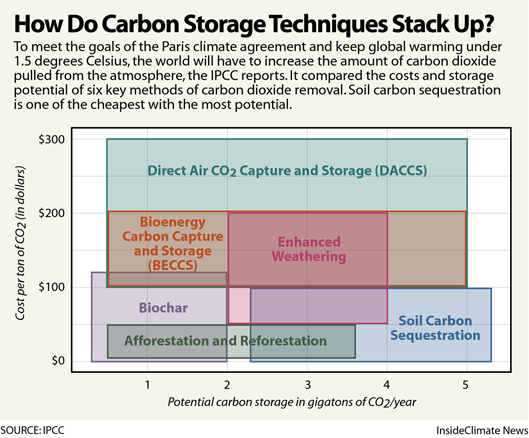 Chart: How Do Carbon Storage Techniques Stack Up?