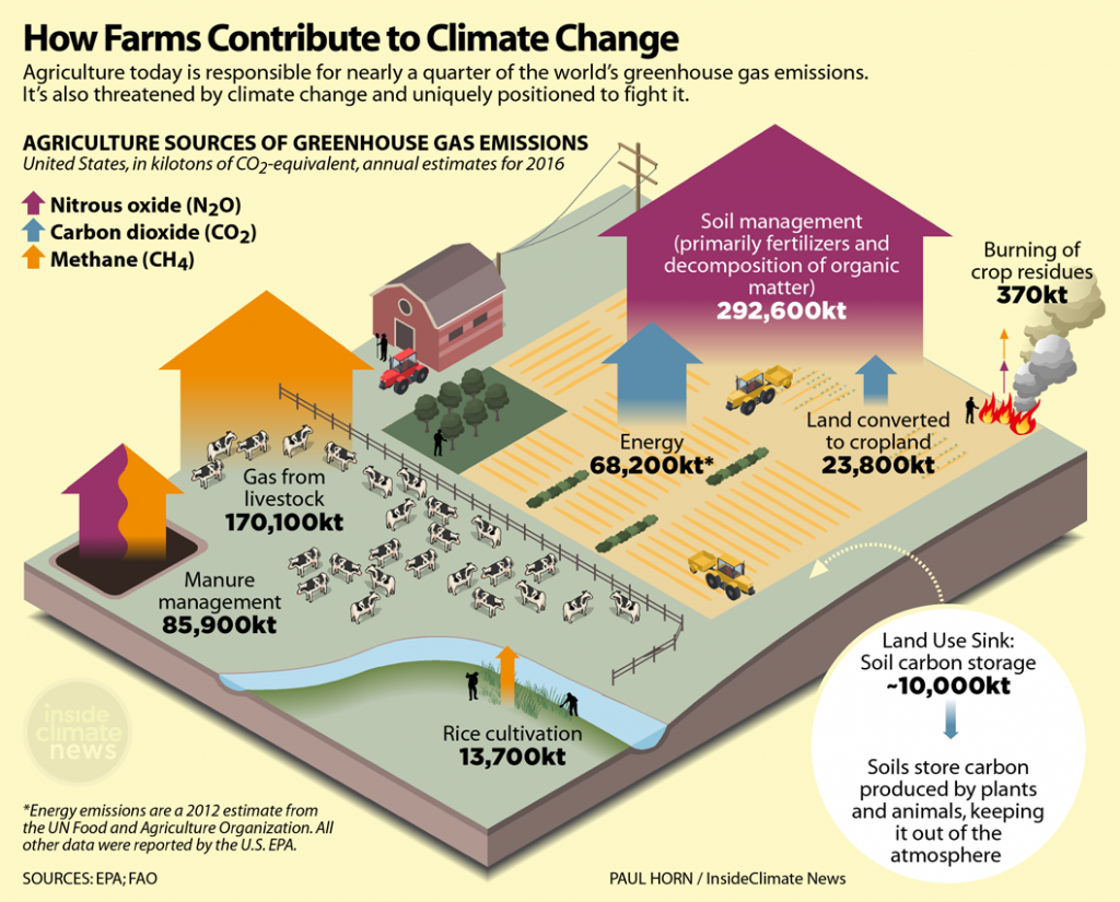 Infographic: How agriculture and livestock contribute to climate change