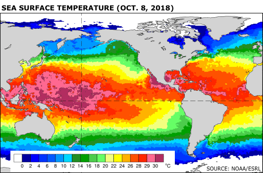 Sea surface temperature as of Oct. 8, 2018. Source: NOAA/ESRL
