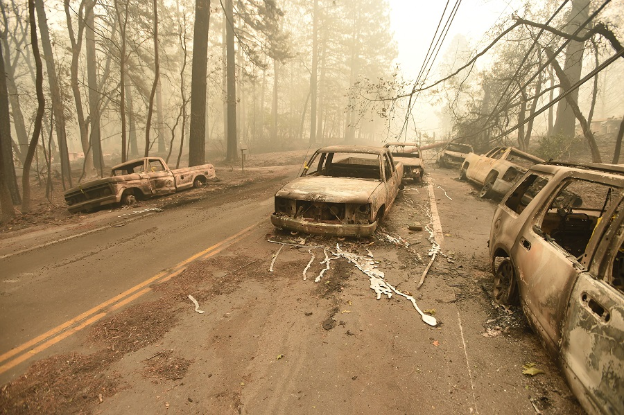 Burned cars line a road near Paradise, California, after the state's deadliest wildfire swept through the town in November. Credit: Josh Edelson/AFP/Getty Images
