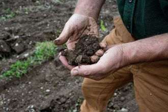 Organic farming in Maine. Credit: Andrew Lichtenstein/Corbis via Getty Images